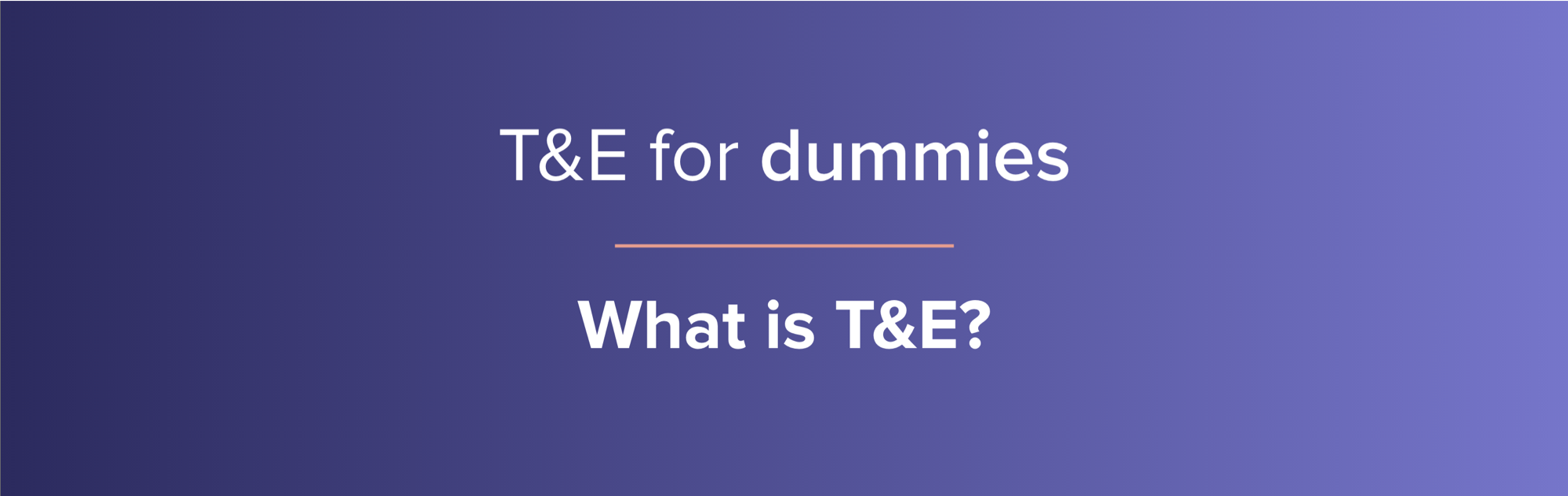 what is T&E