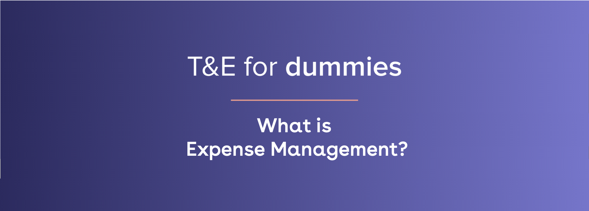 what is expense management