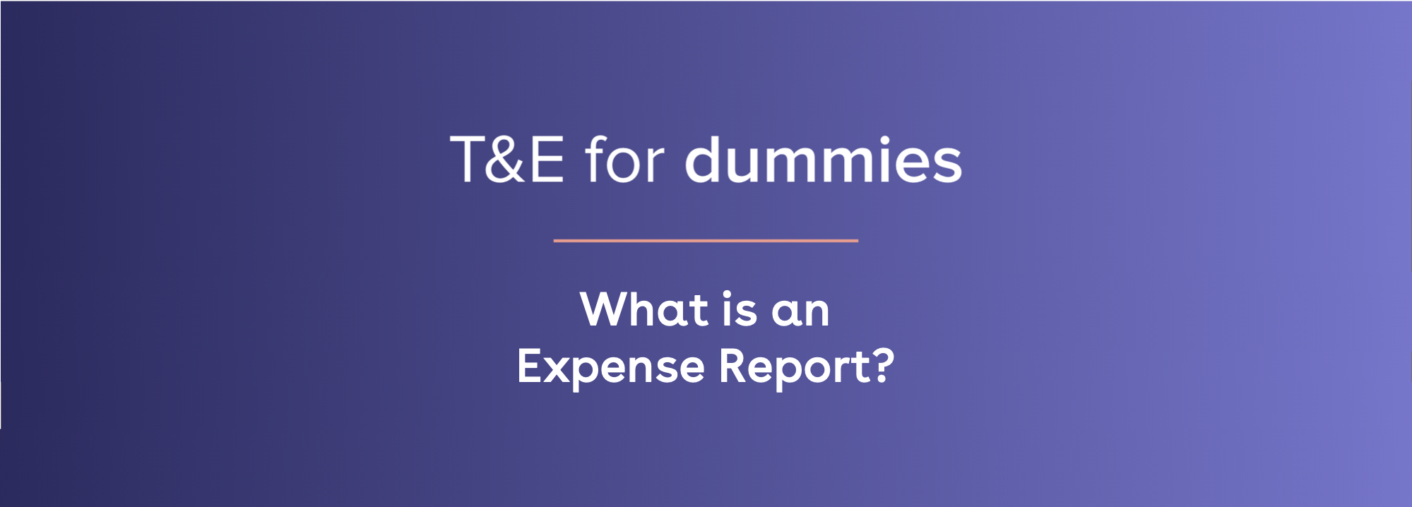 what is an expense report