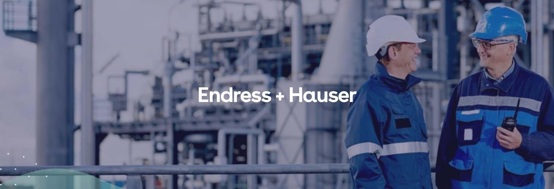 Endress Hauser Banner